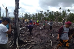 Tree Planting Exercise in Philippines